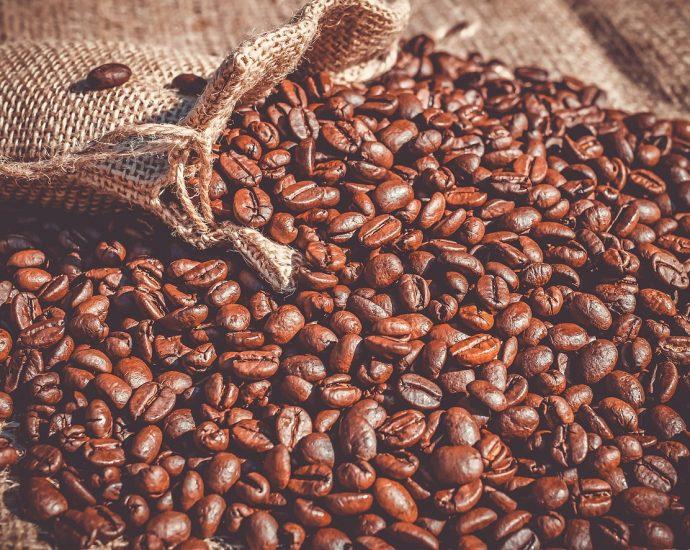 Dla amatorów dobrej kawy