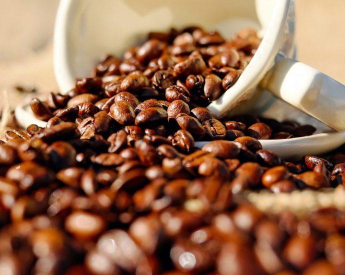 Kawa z jednego źródła