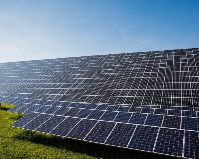Najwyższej jakości panele solarne
